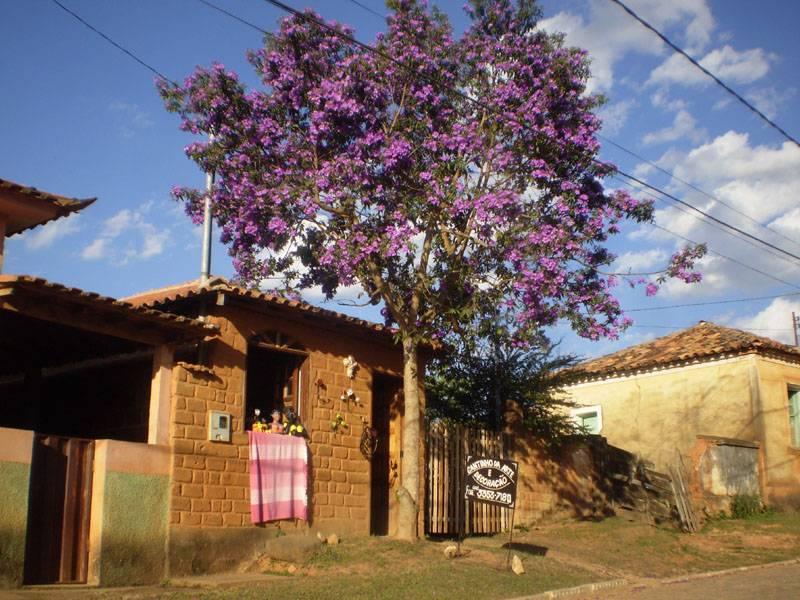 Bichinho (Vitoriano Veloso-MG)