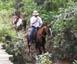 cavalgada na serra de são jose
